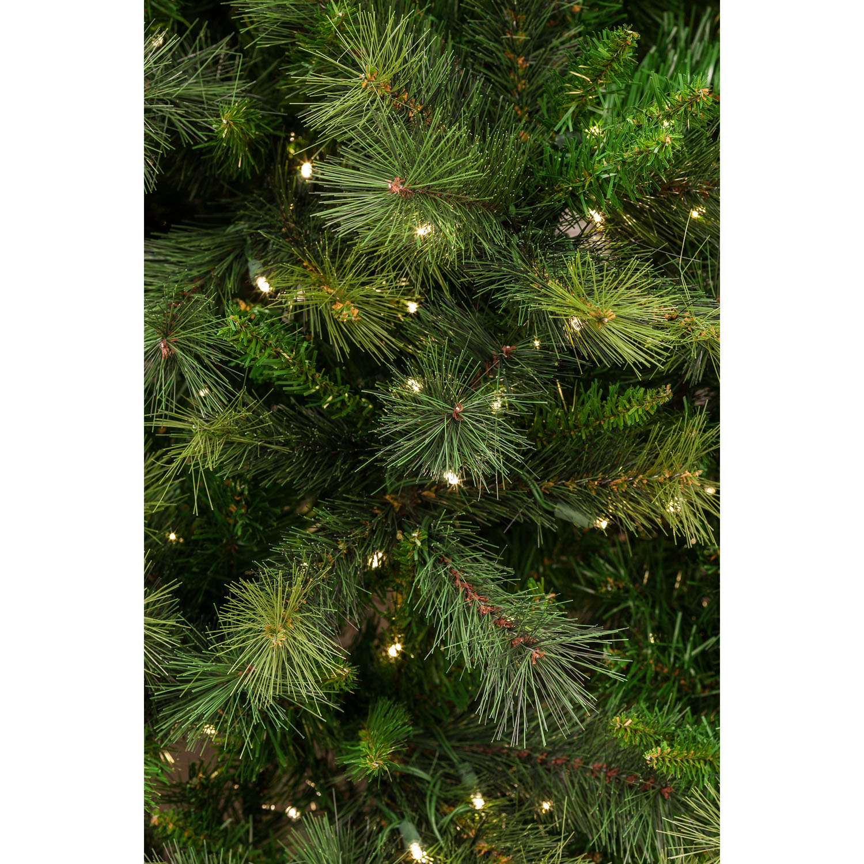 Steele S Christmas Tree Farm: 10 Ft. Canyon Pine Christmas Tree With Smart String