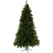 Christmas Time 6.5-Ft. Pennsylvania Pine Artificial Christmas Tree with Clear LED String Lighting - CT-PA065-LED