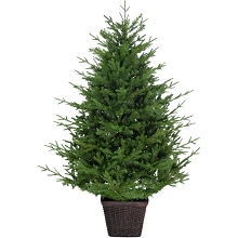 Fraser Hill Farm 5.0-Ft Adirondack Potted Christmas Tree Décor, FFAD060P-0GR