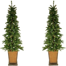 Fraser Hill Farm Set of Two Colorado Fir 6 Ft. Artificial Holiday Potted Trees with Smart LED Lighting, FFCO060-1GR/SET2