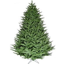 Fraser Hill Farm 9-ft. Centerville Pine Christmas Tree, FFCV090-0GR