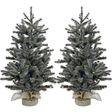 Fraser Hill Farm Set of Two 2-Ft. Heritage Pine Artificial Trees with Burlap Bases and Battery-Operated Multi-Colored LED String Lights, FFHP028-6GRB/SET2