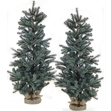 Fraser Hill Farm Set of Two 4-Ft. Heritage Pine Artificial Trees with Burlap Bases, FFHP056-2GRB/SET2
