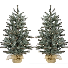 Fraser Hill Farm Set of Two 4-Ft. Heritage Pine Artificial Trees with Burlap Bases and Battery-Operated LED String Lights, FFHP056-5GRB/SET2