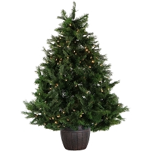Fraser Hill Farm 5-Ft. Northern Cedar Teardrop Christmas Tree in Decorative Pot with Clear LED Lights - FFNC050-5GR