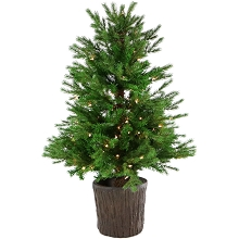 Fraser Hill Farm New England Pine 4-Ft. Artificial Potted Tree with Smart LED Lighting, FFNE040PT-1GR