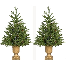 Fraser Hill Farm Set of Two 3-Ft. Noble Fir Artificial Trees with Metallic Urn Bases and Battery-Operated Multi-Colored LED String Lights, FFNF042-6GRB/SET2