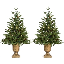Fraser Hill Farm Set of Two 4-Ft. Noble Fir Artificial Trees with Metallic Urn Bases and Battery-Operated LED String Lights, FFNF056-5GRB/SET2