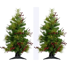 Fraser Hill Farm Set of Two 2-Ft. Newberry Pine Artificial Trees with Battery-Operated LED String Lights, FFNP028-5GRB/SET2