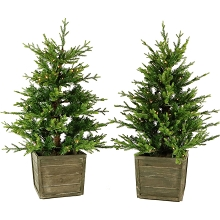 Fraser Hill Farm Set of Two 4-Ft. Royal Pine Artificial Potted Trees with Battery-Operated LED Lights, FFRP040-5GR/SET2