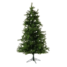 12 Ft. Southern Peace Pine Christmas Tree - FFSP012-0GR