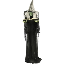 Haunted Hill Farm Life-Size Animatronic Witch, Indoor/Outdoor Halloween Decoration, Light-up Green Eyes, Talking, Battery-Operated, HHWITCH-9FLS