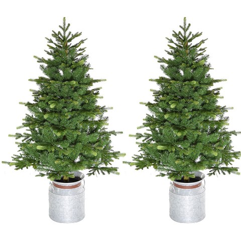 Fraser Hill Farm 4.5-Ft. Porch Accent Tree in Rustic Farmhouse Metal Jug, Set of 2, No Lights, FFPTD054-0GR/SET2